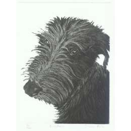 "Sonia Rollo signed limited edition etching ""Einstein"""