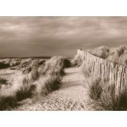 "Lesley Aggar photo on canvas ""Sand Dunes"""