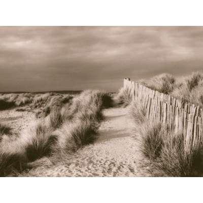 """Lesley Aggar photo on canvas """"Sand Dunes"""""""