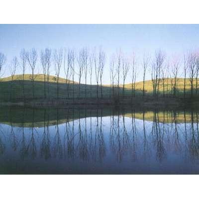 """Photo on canvas """"Lago di San Valentino, Emilia"""""""
