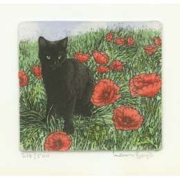 Laura Boyd hand coloured etching 'Cat In Poppies'