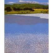 Phil Greenwood -  'Cadair'