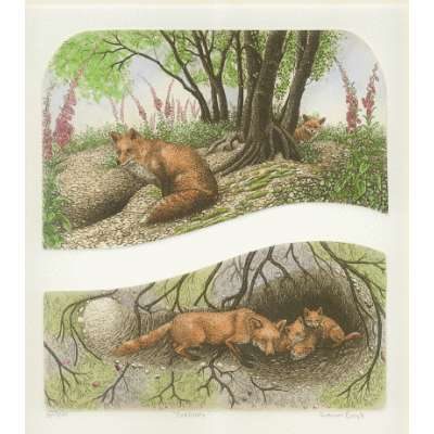 Laura Boyd hand coloured etching 'Fox Loves'