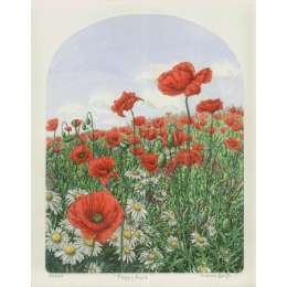 Laura Boyd hand coloured etching 'Poppy Field'