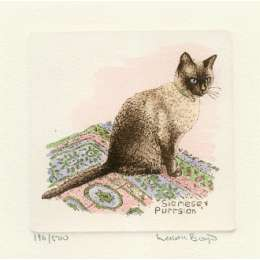 Laura Boyd hand coloured etching 'Siamese Purrsian'
