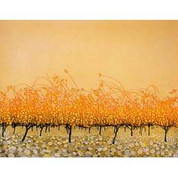 Phil Greenwood - 'Pudding Stones'