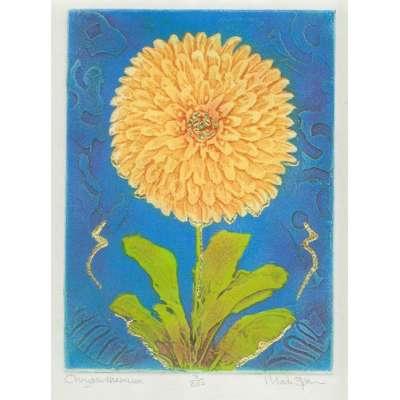 Mark Spain original etching 'Chrysanthemum'