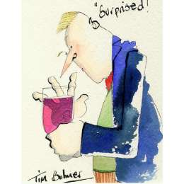 Tim Bulmer original watercolour 'Surprised!'