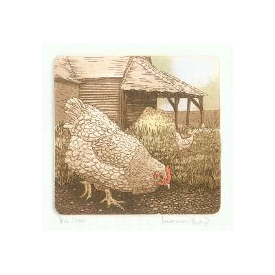 Laura Boyd hand coloured etching 'Hens'